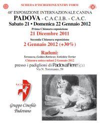 Esposizione Canina Padova 2012