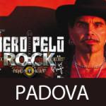 Rock Identikit Piero Pelù Padova 2014