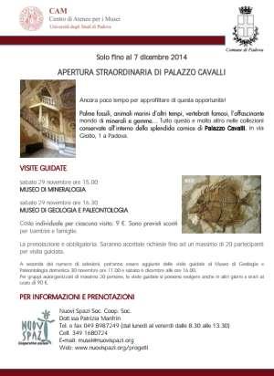 Visita Guidata Palazzo Cavalli Padova